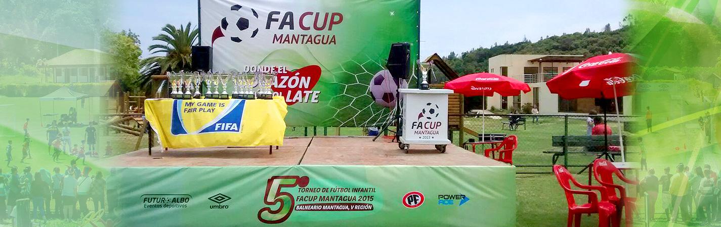FA CUP 2015